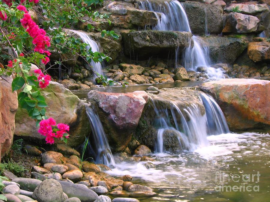 Rocks Photograph - Beautiful Garden  by Yali Shi