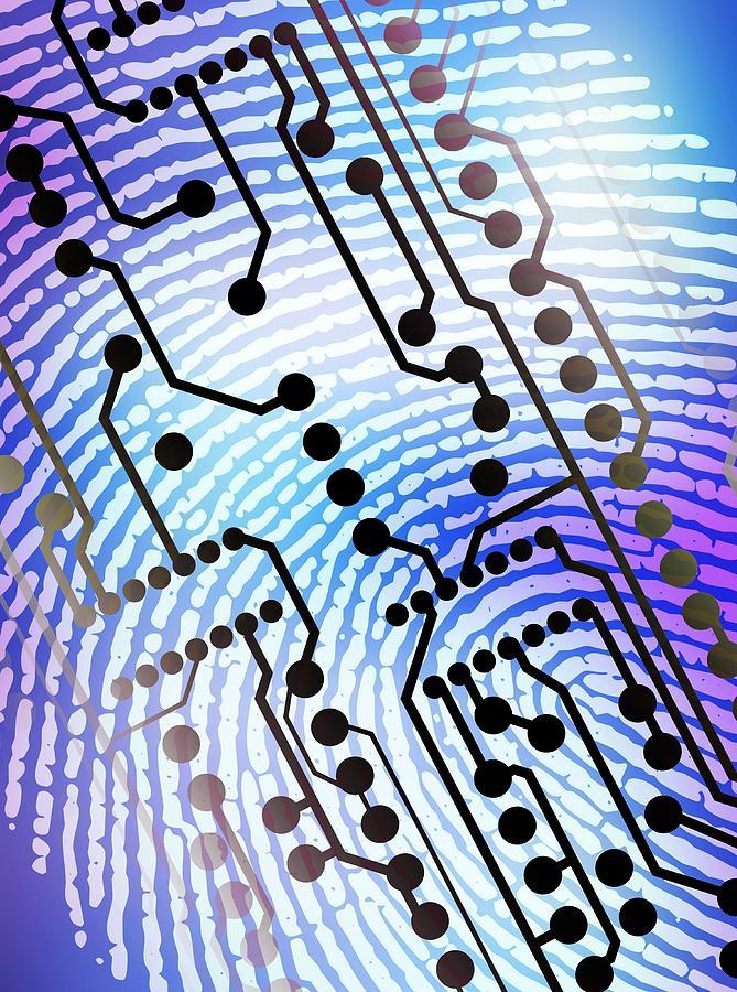 Equipment Photograph - Biometric Fingerprint Scan by Pasieka
