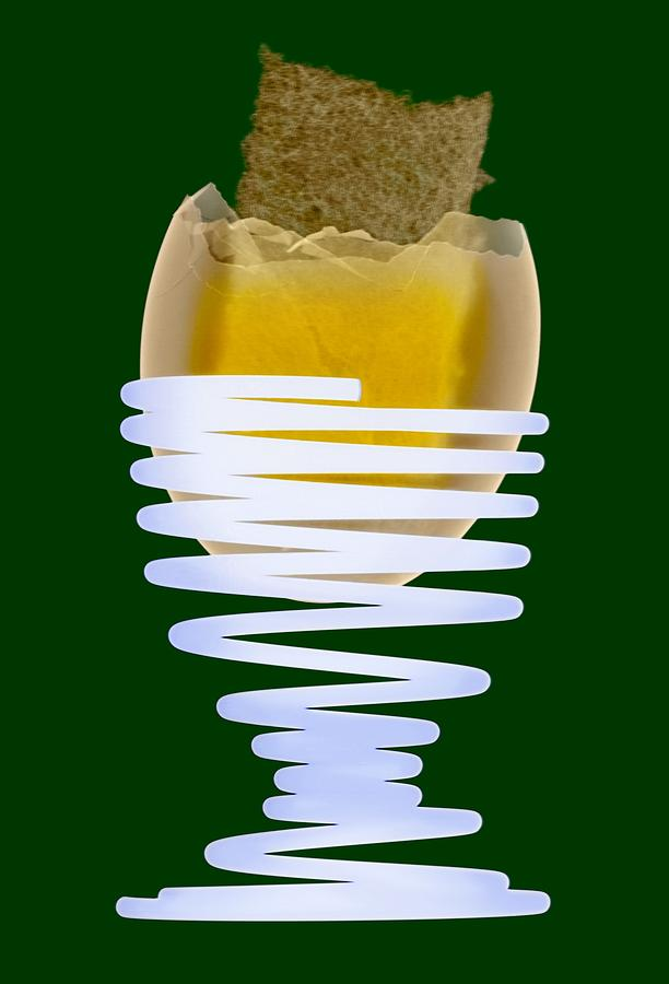 Egg Photograph - Boiled Egg In An Eggcup, X-ray by D. Roberts