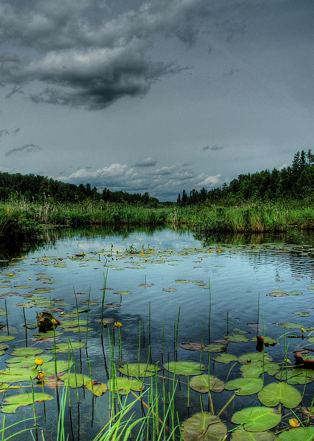 Landscape Photograph - Bottomless Lake by Heather  Rivet