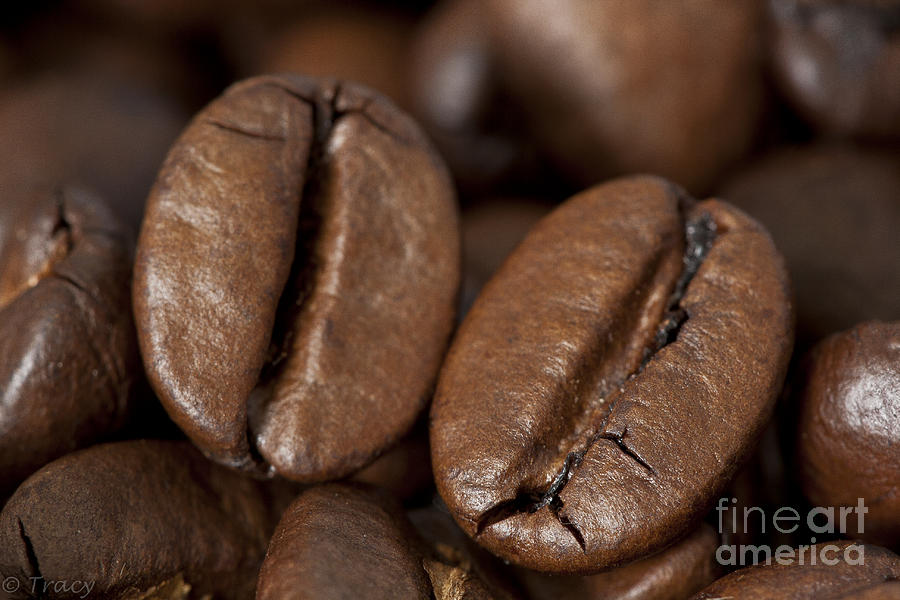 Coffee Photograph - 2 Coffee Beans by Tracy  Hall