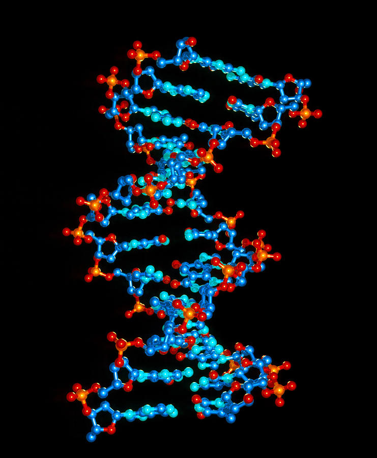computer graphic of a dna molecule from hiv virus photograph by