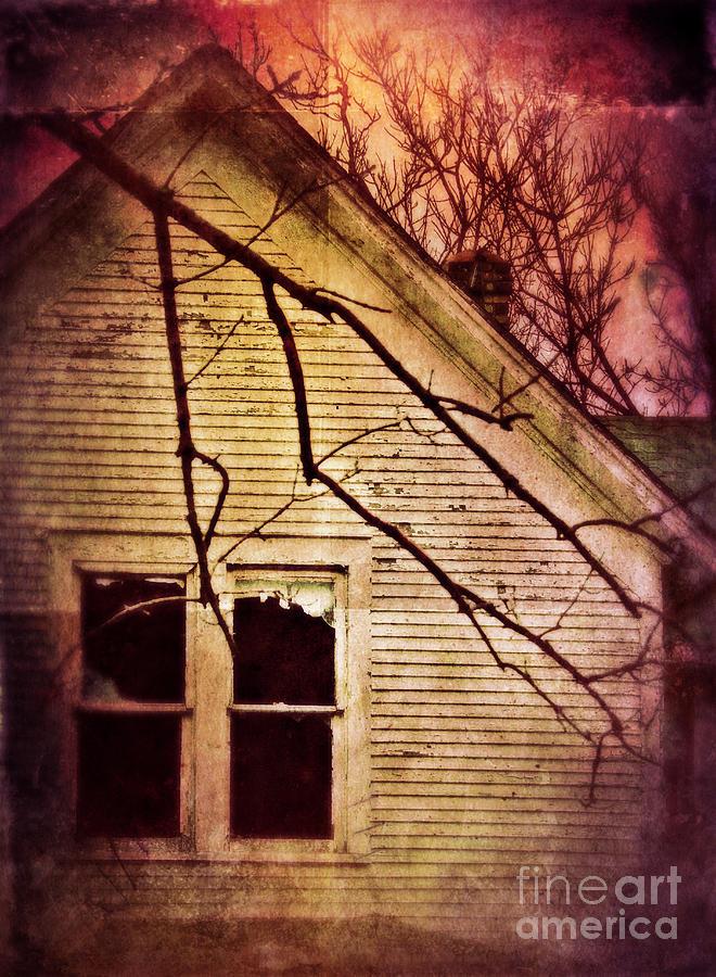 House Photograph - Creepy Abandoned House by Jill Battaglia