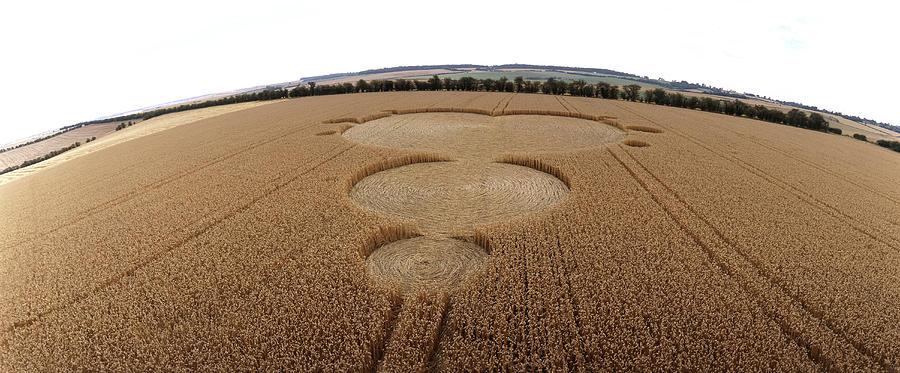 Mandelbrot Set Photograph - Crop Formation In Form Of Mandelbrot Set by David Parker
