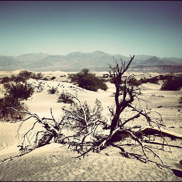 Beautiful Photograph - Death Valley by Luisa Azzolini