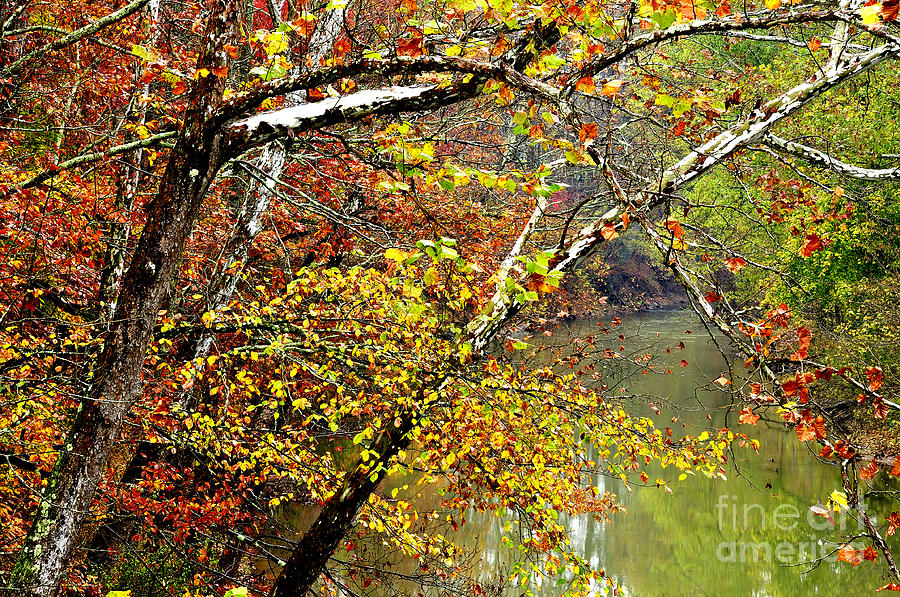 West Virginia Photograph - Fall Along West Fork River by Thomas R Fletcher