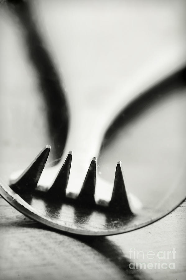 Fork Photograph - Fork by HD Connelly