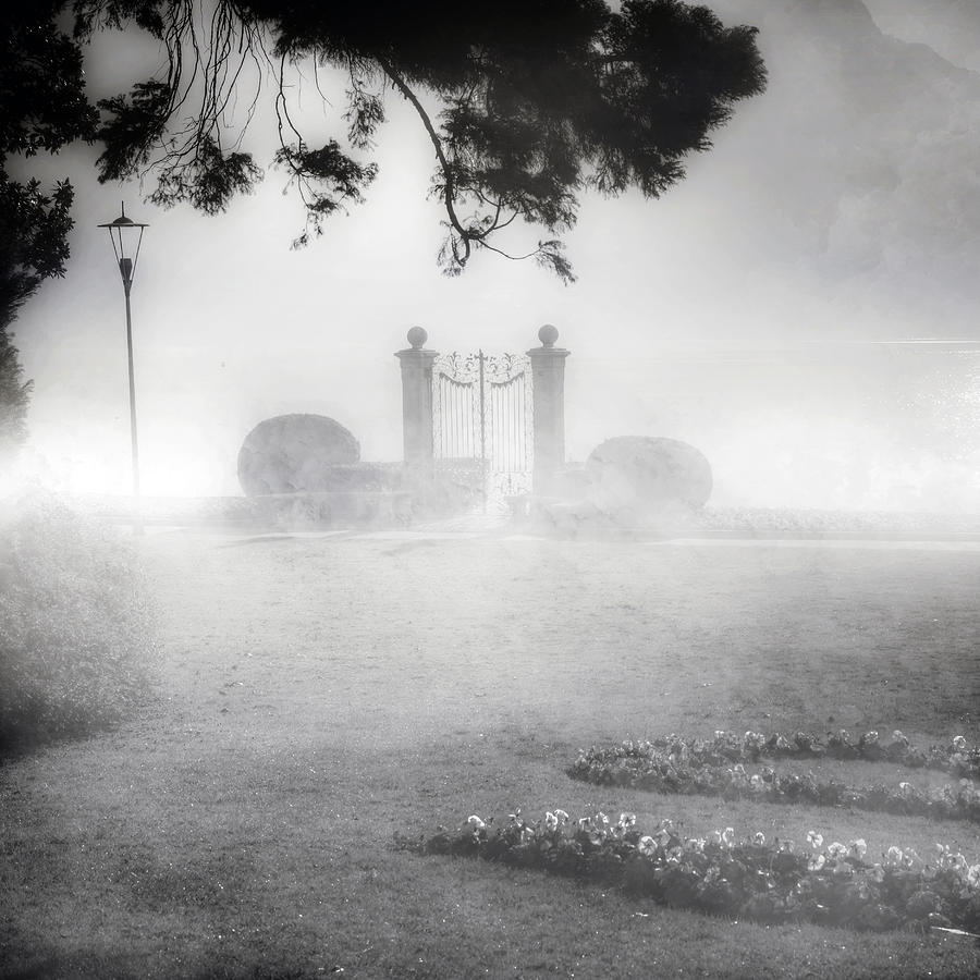 Gate Photograph - Gateway To The Lake by Joana Kruse