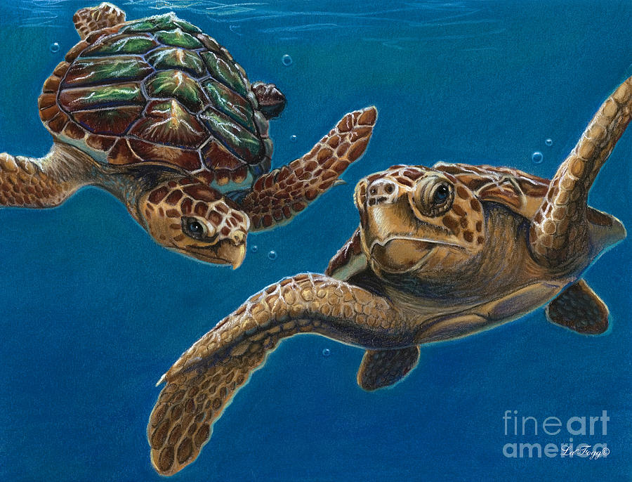 Sea Turtles Painting - Hattie And A Friend by Deb LaFogg-Docherty