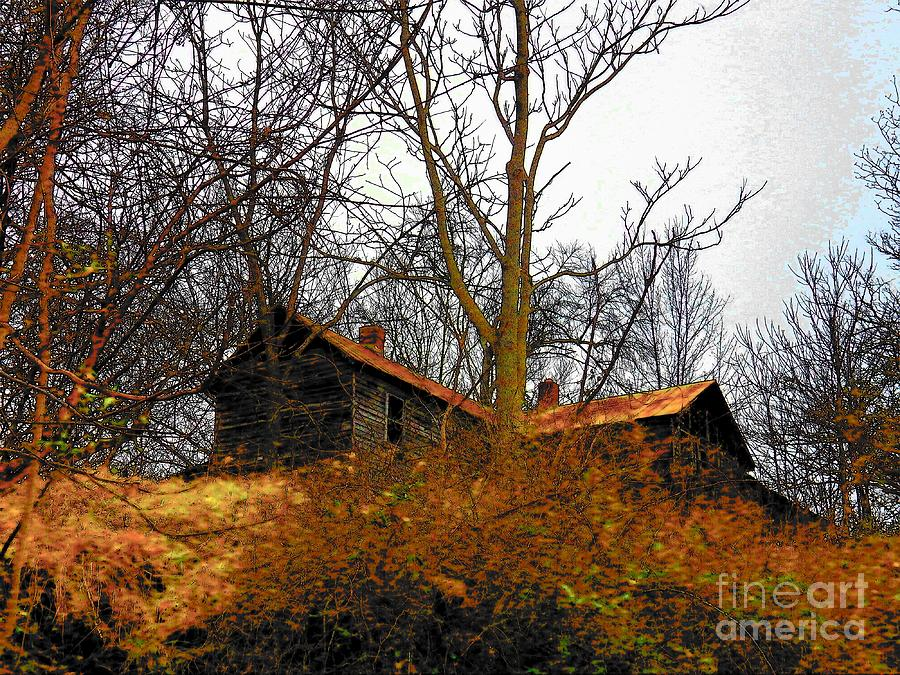 Virginia Photograph - House On The Hill by Joyce Kimble Smith