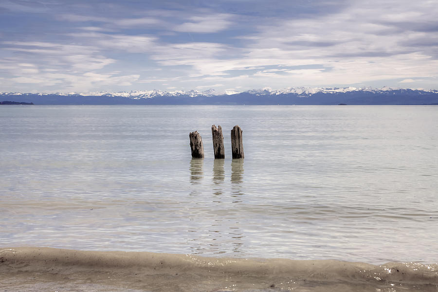 Wood Pile Photograph - Lake Constance by Joana Kruse