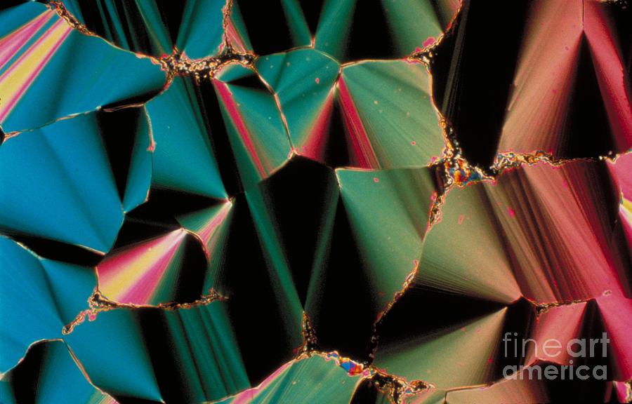 Dna Photograph - Liquid Crystalline Dna by Michael W. Davidson