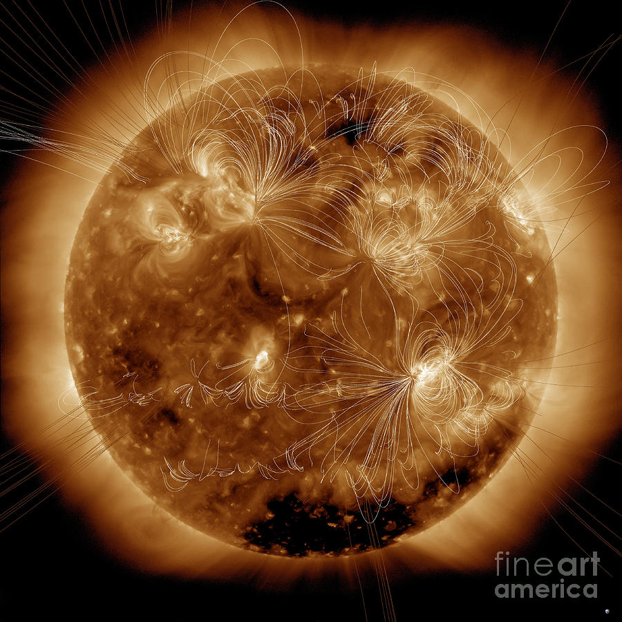 Full Sun Photograph - Magnetic Field Lines On The Sun by Stocktrek Images