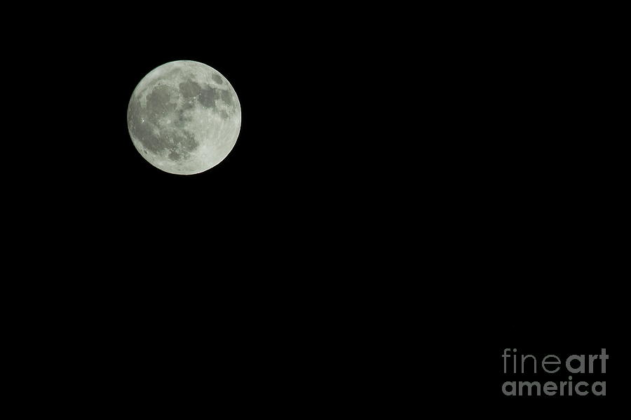 Nature Photograph - Moon by Odon Czintos