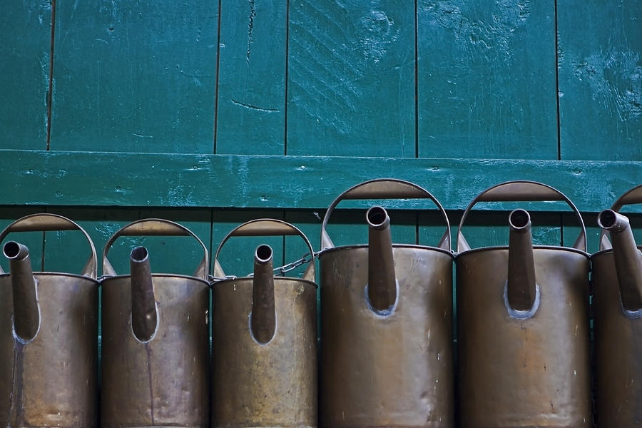 Watering Can Photograph - Old Watering Cans by Joana Kruse