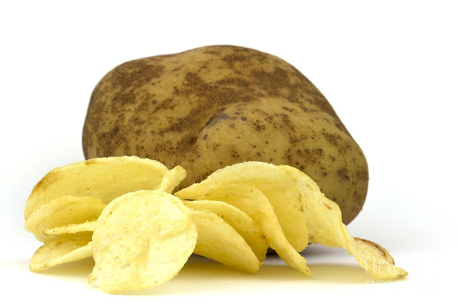 Potato Photograph - Potato Chips by Blink Images
