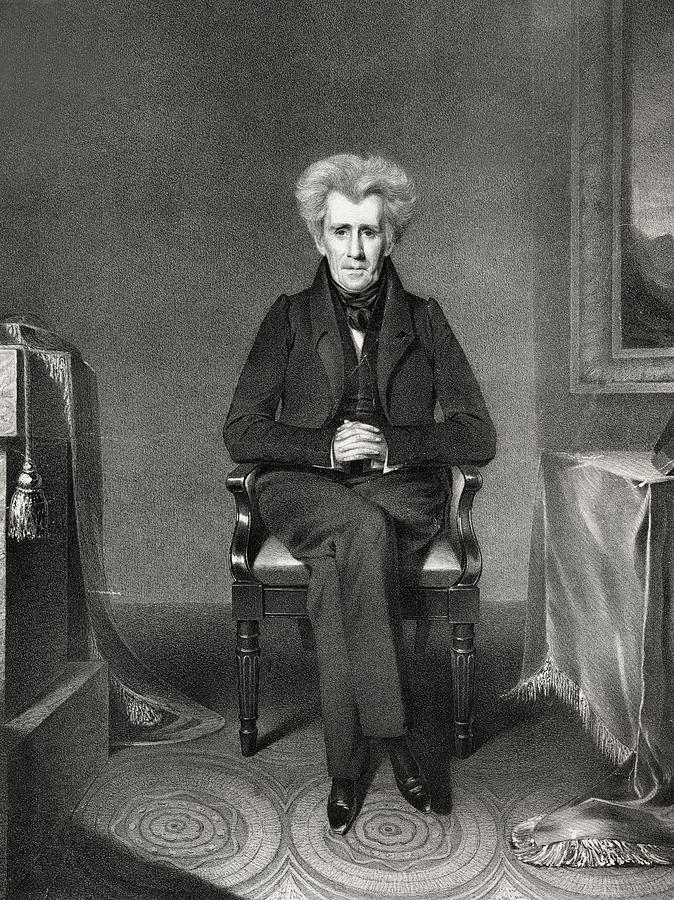 andrew jackson s presidency However, jackson adopted three children: andrew,  events and accomplishments of andrew jackson's presidency   andrew jackson's big block of cheese.