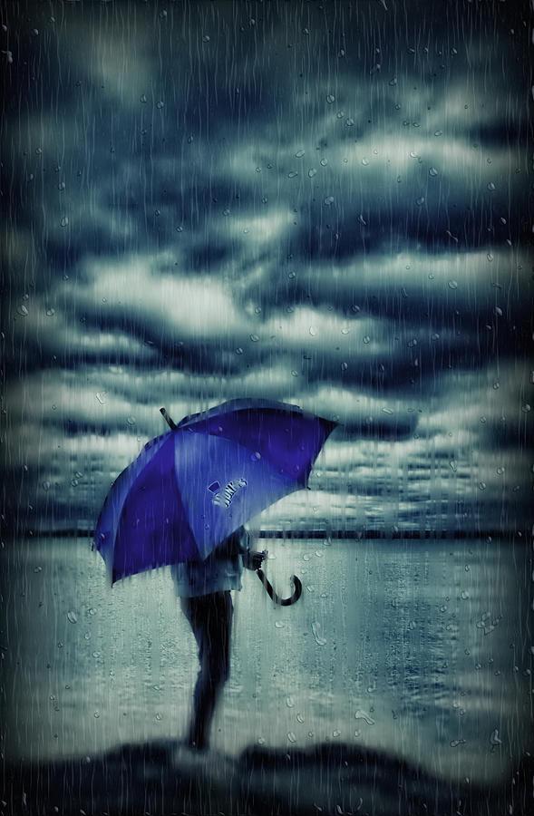 Landscape Photograph - Rain Day by Heather  Rivet
