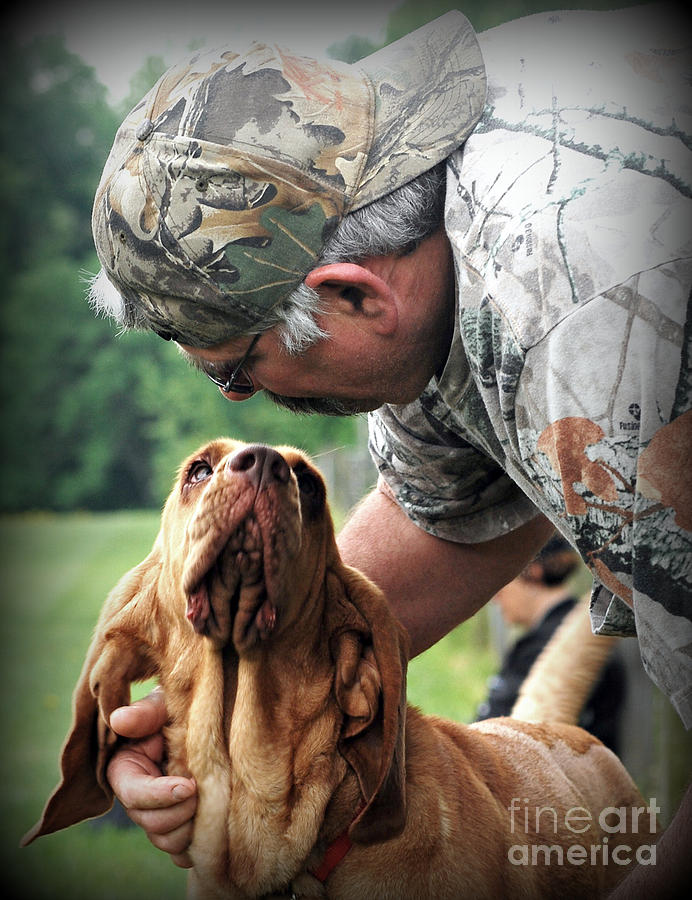 Search And Rescue Dog Photograph by Lila Fisher-Wenzel