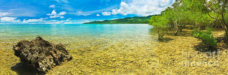 Tropical Panorama Photograph