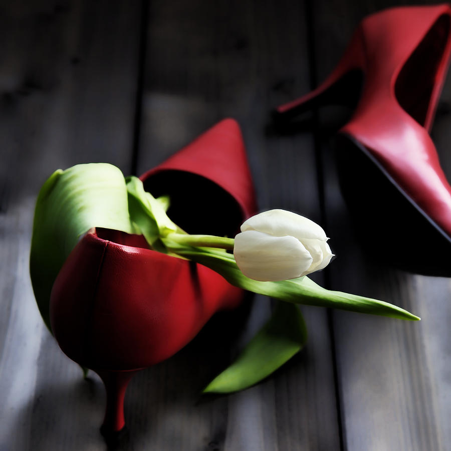 Tulip Photograph - White And Red by Joana Kruse