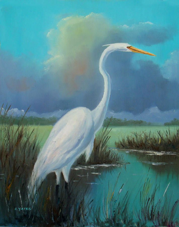 White egret painting by charles yates for White heron paint