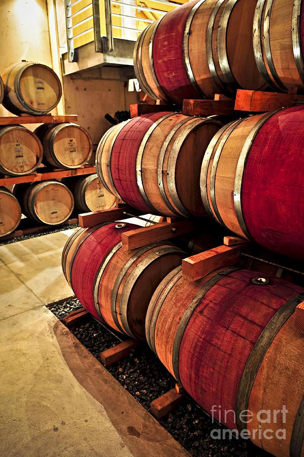 Barrels Photograph - Wine Barrels by Elena Elisseeva