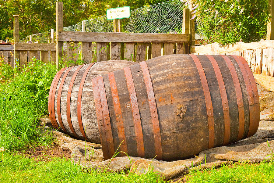 Alcohol Photograph - Wooden Barrels by Tom Gowanlock