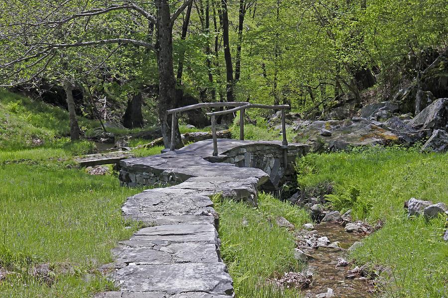 Alpine Photograph - Wooden Bridge by Joana Kruse