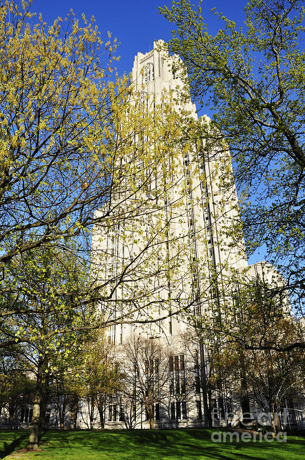 Cathedral Of Learning Photograph - Cathedral Of Learning by Thomas R Fletcher