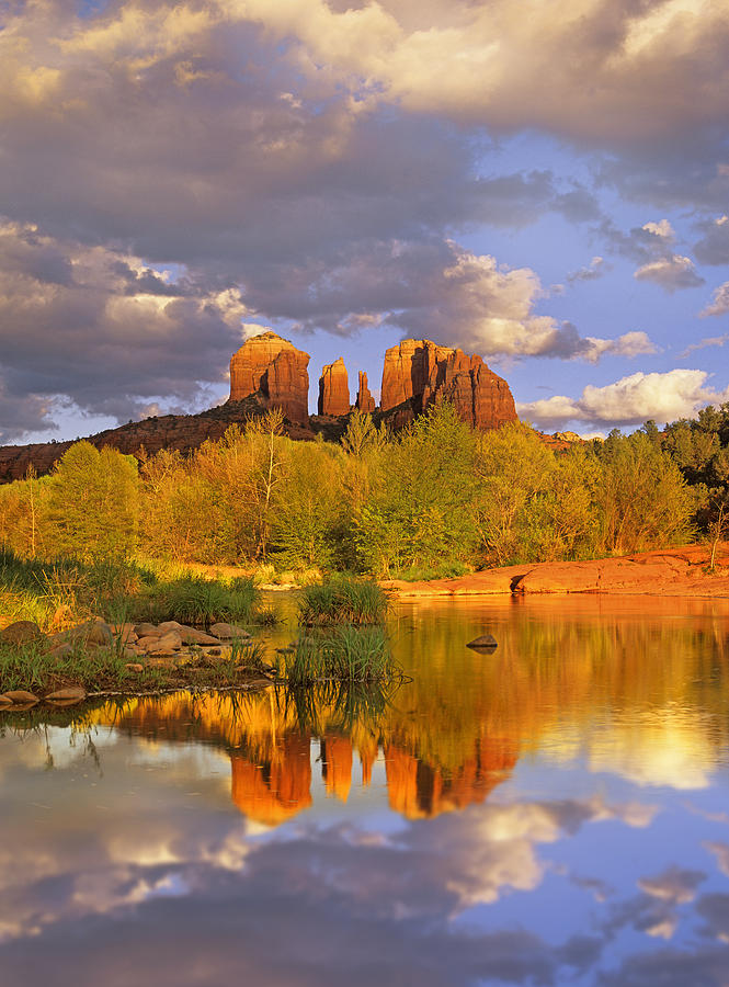 Arizona Photograph - Cathedral Rock Reflected In Oak Creek by Tim Fitzharris