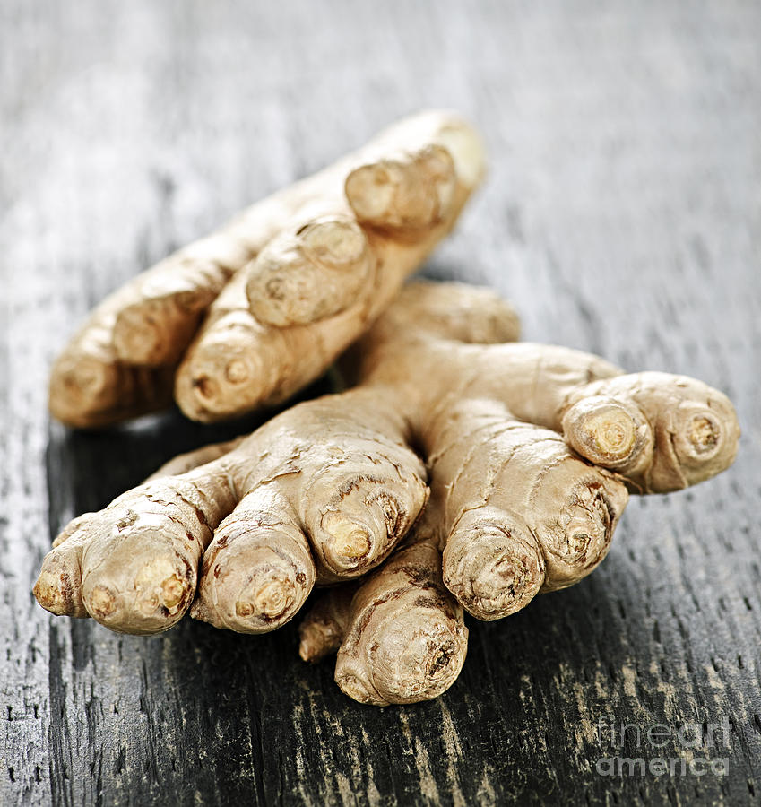 Ginger Photograph - Ginger Root by Elena Elisseeva