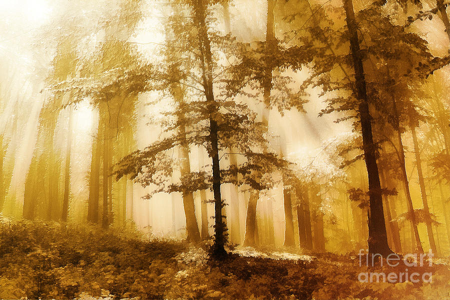 Abstract Painting - Golden Forest  by Odon Czintos