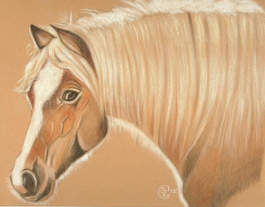 Horse Painting - Halfie by Stephanie L Carr
