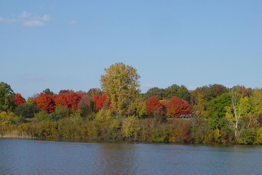 October In Michigan Photograph by Margrit Schlatter