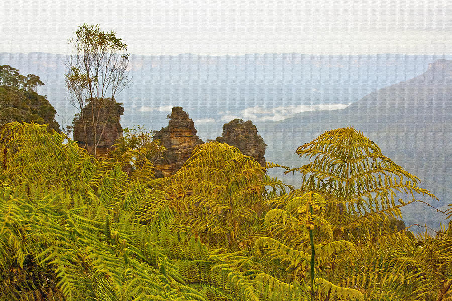 New South Wales Photograph - 3 Sisters Blue Mountains by Douglas Barnard