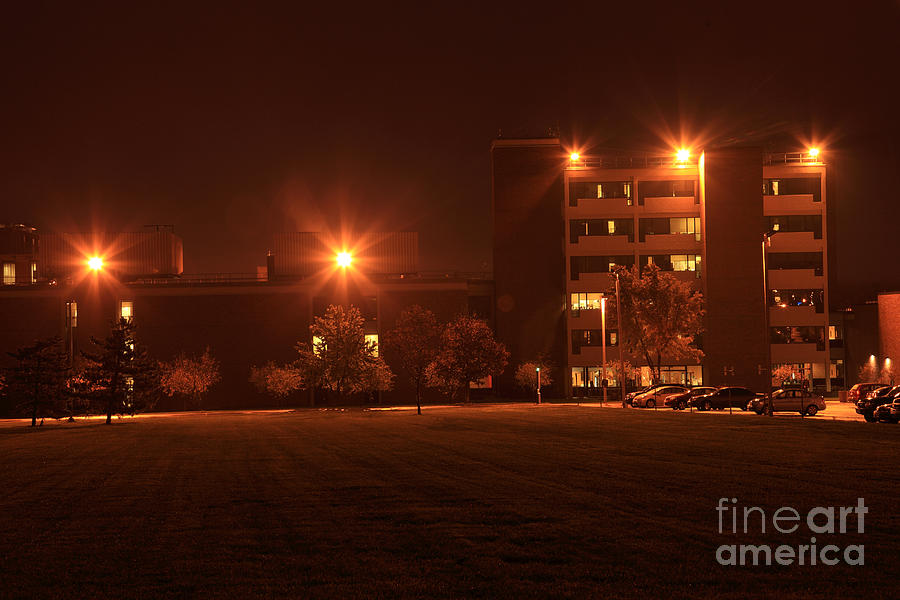 Sodium Vapor Lights On College Campus Photograph by Ted ...