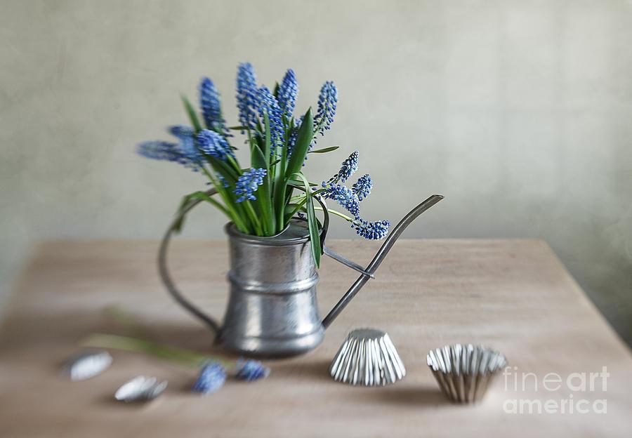 Metal Photograph - Still Life With Grape Hyacinths by Nailia Schwarz
