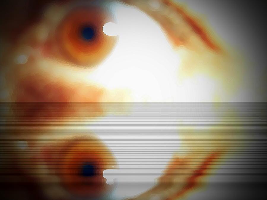 Eye Photograph - Survivor by Beto Machado