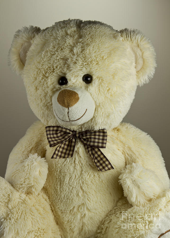 Toy Photograph - Teddy Bear by Blink Images