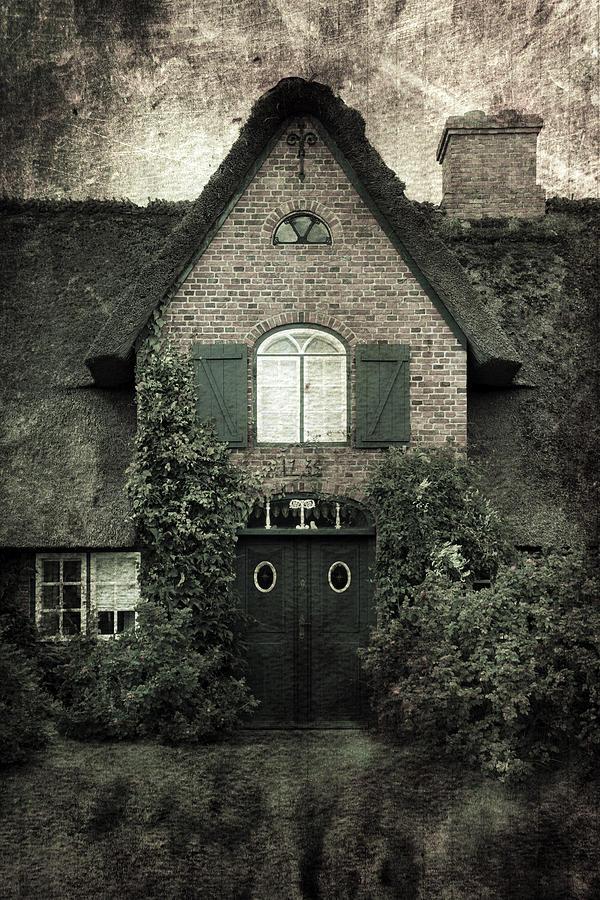 House Photograph - Thatch by Joana Kruse