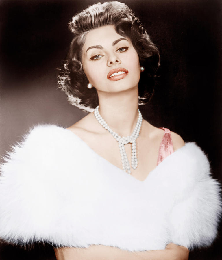 1950s Hairstyles Photograph - The Pride And The Passion, Sophia by Everett