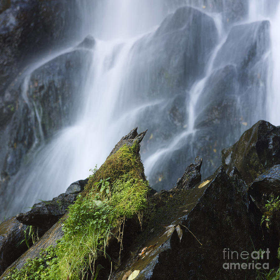 Nature Photograph - Waterfall Of Vaucoux. Puy De Dome. Auvergne. France by Bernard Jaubert