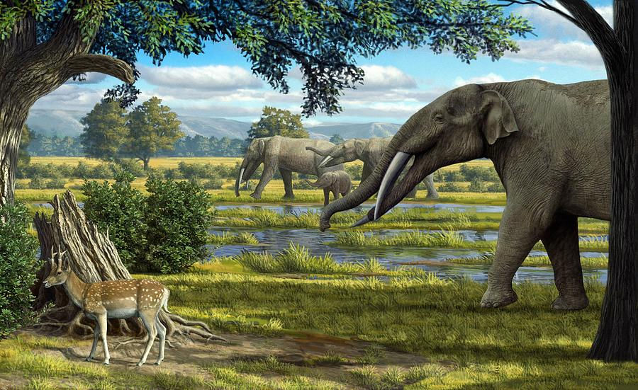 Wildlife Of The Miocene Era Artwork Photograph By