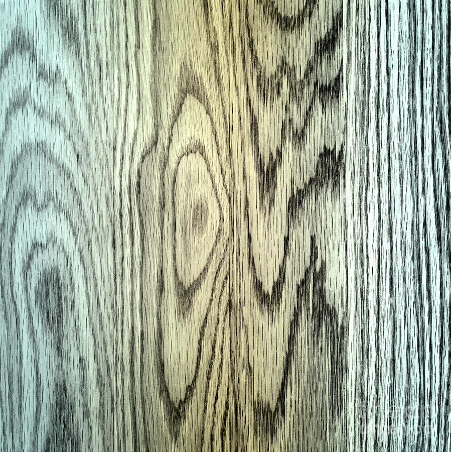 Wood Photograph - Wood Texture by Blink Images