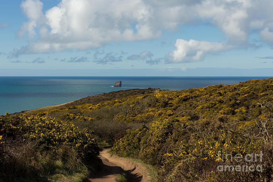 Landscape Photograph - Cornish Seascape St Agnes  by Brian Roscorla