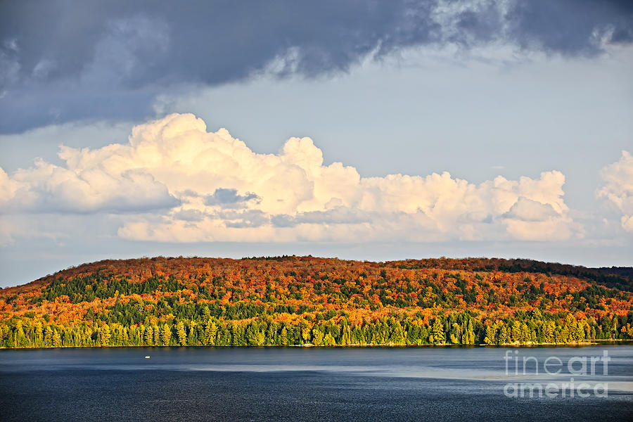 Autumn Photograph - Fall Forest And Lake by Elena Elisseeva