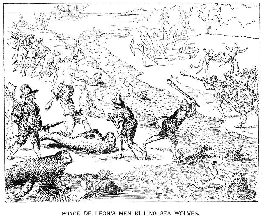 1590 photograph juan ponce de leon by granger