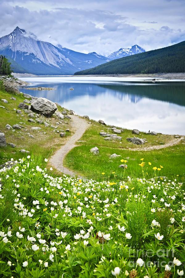 Jasper Photograph - Mountain Lake In Jasper National Park by Elena Elisseeva