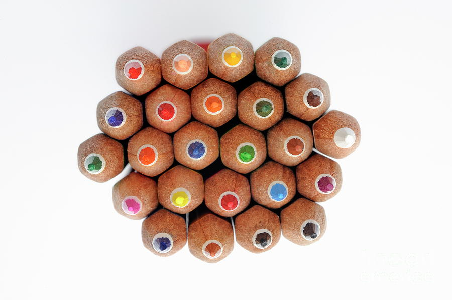 Variation Photograph - Row Of Colorful Crayons by Sami Sarkis